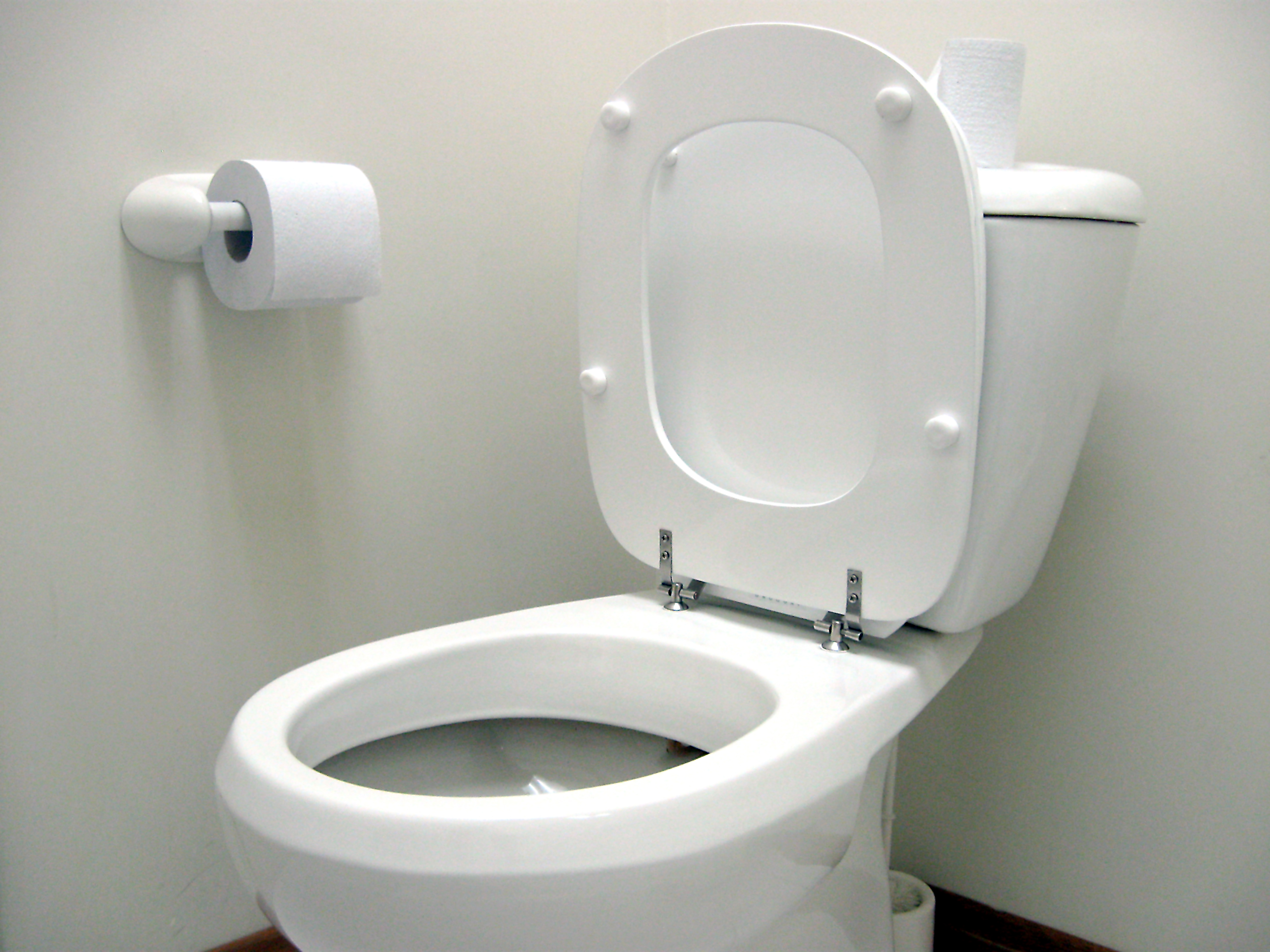 Male Chauvinists Unleash Toilet Seat Reign of Terror Across the U.S. ...