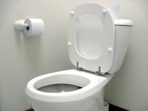 Upright Toilet Seat